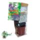kit nopal à planter